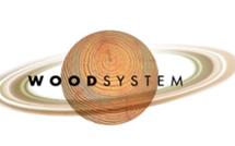 Паркетная доска Wood System